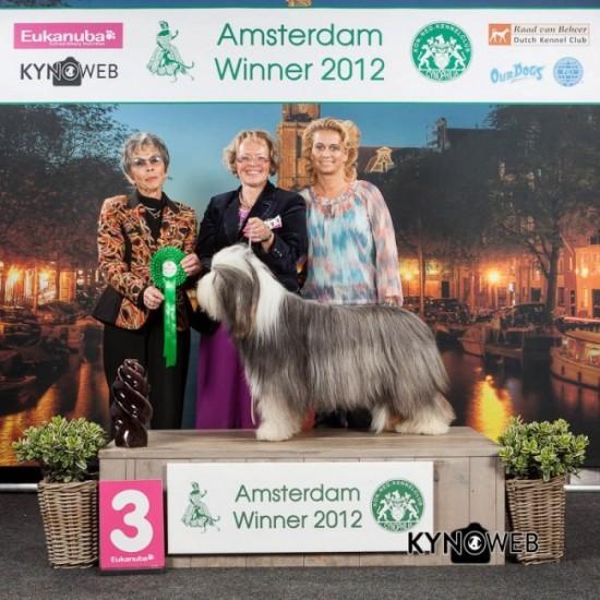 Amsterdam Group 1
